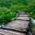 wooden path in national park in plitvice stock photo © fesus