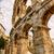 famous ancient roman amphitheater   pula stock photo © fesus