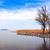 outro · lago · Balaton · céu · paisagem · neve - foto stock © fesus