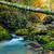 córrego · montanha · floresta · outono · cenário · montanhas - foto stock © fesus