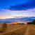 высушите · сено · тюк · трава · продовольствие · влажный - Сток-фото © fesus