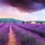 yaz · gün · batımı · manzara · çiçek · bulutlar - stok fotoğraf © fesus