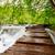 idyllique · paradis · cascade · vert · mousse · croissant - photo stock © fesus