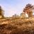místico · humor · cair · paisagem · luz · dente - foto stock © fesus