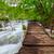 fából · készült · turista · út · víz · fa · út - stock fotó © fesus