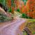 jesienią · parku · zielone · Hill · czerwony · pozostawia - zdjęcia stock © fesus