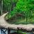 fából · készült · ösvény · dűne · fa · homok · kapcsolat - stock fotó © fesus