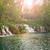 zonnestraal · groene · bos · water · boom · voorjaar - stockfoto © fesus