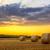boerderij · veld · schemering · hooi · zonsondergang · bomen - stockfoto © fesus