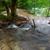floresta · enseada · cênico · ver · agradável · colina - foto stock © fesus