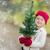 kerstboom · buiten · ingericht · lichten · gedekt · sneeuw - stockfoto © feverpitch