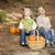 fratello · sorella · bambini · legno · passi · zucche - foto d'archivio © feverpitch