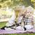 tatlı · küçük · kız · bebek · kardeş · park · yanak - stok fotoğraf © feverpitch