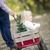 vader · kerstboom · liefhebbend · buitenshuis - stockfoto © feverpitch