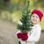 クリスマス · 陽気な · 幸せ · 休日 · かわいい - ストックフォト © feverpitch