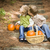 brother and sister children on wood steps with pumpkins playing stock photo © feverpitch