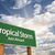 tropical storm green road sign stock photo © feverpitch