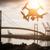 sziluett · repülés · fölött · víz · öböl · tenger - stock fotó © feverpitch