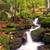 outono · paisagem · pitoresco · cachoeiras · cair · parque - foto stock © fisfra