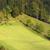 alpesi · tájkép · tehenek · Franciaország · tavasz · égbolt - stock fotó © fisfra
