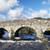 Dart · rivière · pont · vieux · granit - photo stock © flotsom