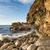 tengerpart · nyár · Sussex · Anglia · tavasz · tenger - stock fotó © flotsom