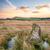 steen · cirkel · afstandsbediening · zonsondergang · natuur · reizen - stockfoto © flotsom