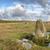 stannon stone circle on bodmin moor in cornwall stock photo © flotsom