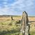 pierre · cercle · permanent · pierres · paysage · Voyage - photo stock © flotsom