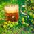 hop · lievito · malto · ingrediente · birra · foglia - foto d'archivio © fotoaloja