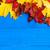 automne · layout · blanche · espace · texture · nature - photo stock © fotoaloja