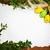 Paskalya · boş · mektup · kart · yumurta · boş · kart - stok fotoğraf © fotoaloja
