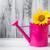 virágok · locsolókanna · klasszikus · hatás · fénykép · tavaszi · virágok - stock fotó © fotoaloja