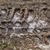 tread pattern tire frozen ground stock photo © fotoaloja