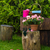 tavasz · kert · szerszámok · kellékek · kertészkedés · szükség - stock fotó © fotoaloja