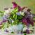 весны · довольно · цветочный · цвести · весна - Сток-фото © fotoaloja