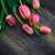 art abstract background spring tulips wooden design stock photo © fotoaloja