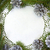 abete · rosso · ramoscello · dettaglio · verde · immagini · lato - foto d'archivio © fotoaloja