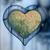 forme · de · coeur · fleurs · isolé · blanche · fleur · coeur - photo stock © fotoaloja