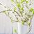 csendélet · virágzó · ágak · váza · virág · fa - stock fotó © fotoaloja