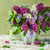 Still Life bouquet lilacs stock photo © fotoaloja