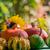 automne · récolte · jardin · citrouille · fruits · coloré - photo stock © fotoaloja