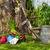 narzędzia · wyposażenie · pracy · wiosną · ogród · trawy - zdjęcia stock © fotoaloja