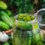 augurken · specerijen · groenten · glas · jar · tabel - stockfoto © fotoaloja