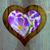формы · сердца · цветы · изолированный · белый · цветок · сердце - Сток-фото © fotoaloja