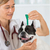 veterinary clinic with a french bulldog stock photo © fotoedu