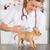 veterinario · cachorro · veterinario · uno · primero · médico - foto stock © fotoedu