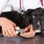 veterinário · cão · americano · veterinário · sorrir · médico - foto stock © fotoedu