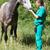 veterinario · cirujano · médico · estetoscopio - foto stock © fotoedu