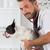 frans · bulldog · kliniek · veeartsenijkundig · schoonmaken - stockfoto © fotoedu